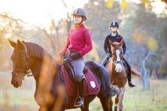 Groupe de filles de cavalier montant leurs chevaux en parc Photo stock