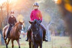 Groupe de filles de cavalier montant leurs chevaux en parc Photos libres de droits
