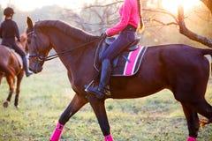 Groupe de filles de cavalier montant leurs chevaux en parc Image stock