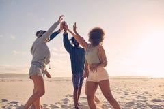 Groupe de fiving élevé d'amis heureux sur la plage Image libre de droits