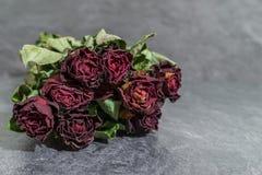 Groupe de fleur avec les roses rouges sèches Photo stock