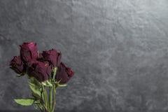 Groupe de fleur avec les roses rouges sèches Image libre de droits