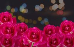 Groupe de fleur de rose de rouge sur le fond de nuit avec la lumière de bokeh Photographie stock libre de droits