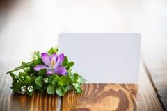 Groupe de fleurs avec des crocus Photo stock