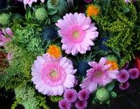 groupe de fleurs avec des gerberas à vendre sur le marché de fleur Images libres de droits