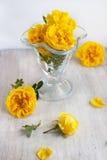 Groupe de fleurs dans le becher en verre Images stock