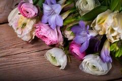 Groupe de fleurs de source Photographie stock libre de droits