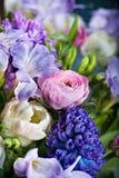 Groupe de fleurs de source Photo stock