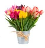 Groupe de fleurs de tulipes dans le pot en métal Photographie stock