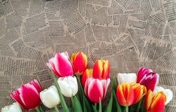 Groupe de fleurs de tulipes sur le fond de journal de vintage Image libre de droits