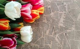 Groupe de fleurs de tulipes sur le fond de journal de vintage Photographie stock