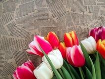 Groupe de fleurs de tulipes sur le fond de journal de vintage Photo stock