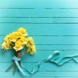Groupe de fleurs jaunes de narcisse ou de jonquille Photos stock