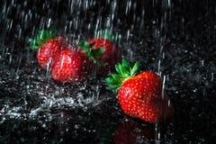 Groupe de fraises avec des baisses en baisse de l'eau photo libre de droits