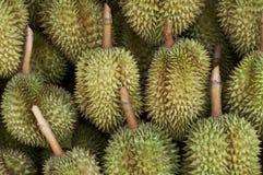 Groupe de fruit tropical célèbre de durian Image libre de droits