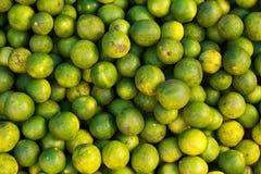 Groupe de fruits organiques de limette Images libres de droits