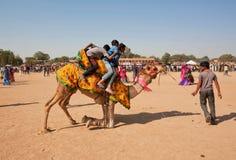 Groupe de garçons essayant de descendre du chameau Photos libres de droits