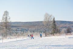 Groupe de glissière de skieurs de la montagne Le skieur à glisser sur la montagne Skieur et skis photographie stock libre de droits