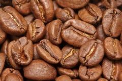 Groupe de graines de café brunes fond, macro, plan rapproché Image libre de droits