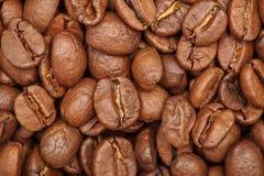 Groupe de graines de café brunes fond, macro, plan rapproché Photos libres de droits