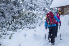 Groupe de hausse marchant dans la forêt pendant la chute de neige l'hiver images libres de droits