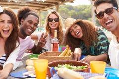 Groupe de jeunes amis appréciant le déjeuner dehors Photographie stock