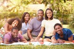 Groupe de jeunes amis ayant le pique-nique ensemble Image libre de droits