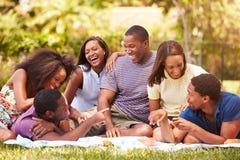 Groupe de jeunes amis ayant le pique-nique ensemble Photographie stock libre de droits