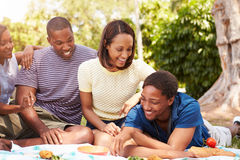Groupe de jeunes amis ayant le pique-nique ensemble Image stock