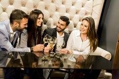 Groupe de jeunes amis grillant avec du vin blanc Photographie stock libre de droits