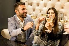 Groupe de jeunes amis grillant avec du vin blanc Photographie stock