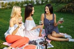 Groupe de jeunes amis heureux des vacances appréciant le vin au pique-nique Photographie stock
