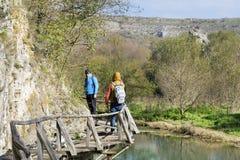 Groupe de jeunes amis pour une promenade dans la montagne Paysage de rivière Photo libre de droits