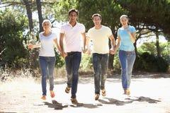 Groupe de jeunes amis sur la promenade dans la campagne Image stock