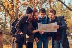 Groupe de jeunes amis trimardant dans la forêt colorée d'automne, regardant la carte et prévoyant la hausse image stock