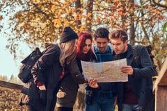 Groupe de jeunes amis trimardant dans la forêt colorée d'automne, regardant la carte et prévoyant la hausse image libre de droits