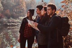 Groupe de jeunes amis trimardant dans la forêt colorée d'automne, regardant la carte et prévoyant la hausse photo libre de droits