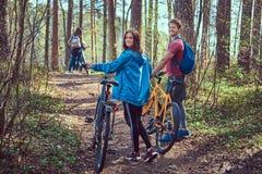 Groupe de jeunes amis trimardant par la forêt avec des vélos un beau jour d'été Photographie stock libre de droits