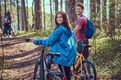 Groupe de jeunes amis trimardant par la forêt avec des vélos un beau jour d'été Photos stock