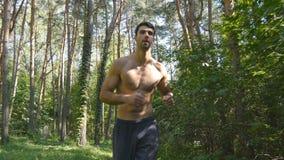 Groupe de jeunes athlètes musculaires courant au chemin forestier Hommes forts actifs s'exerçant dehors Sportif beau convenable banque de vidéos