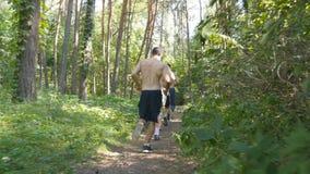 Groupe de jeunes athlètes musculaires courant au chemin forestier Hommes forts actifs s'exerçant dehors Sportif beau convenable clips vidéos