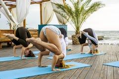 Groupe de jeunes femelles pratiquant le yoga sur le bord de la mer pendant le lever de soleil Photographie stock libre de droits