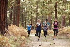 Groupe de jeunes femmes adultes courant dans une forêt Image stock