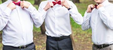 Groupe de jeunes hommes avec le noeud papillon Amis gais Amis à l'extérieur Jour du mariage Photo libre de droits