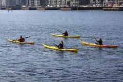 Groupe de kayaker barbotant dans le kayak par l'aviron de mer, le sport aquatique actif et les loisirs, kayaking Photos libres de droits