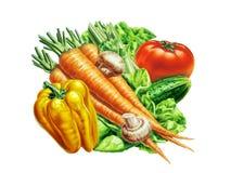 Groupe de légumes frais Image stock