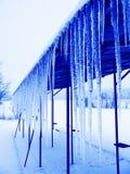 Groupe de l'hiver Images stock