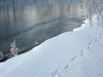 Groupe de l'hiver Photos libres de droits