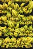 Groupe de la banane Photo libre de droits