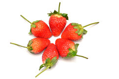 Groupe de la fraise Images libres de droits